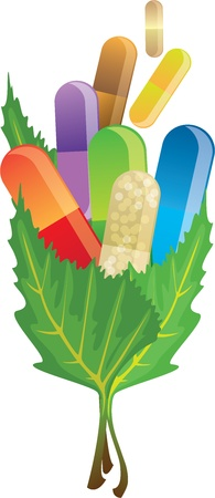 pills capsules in the leaves, vector illustration Vector