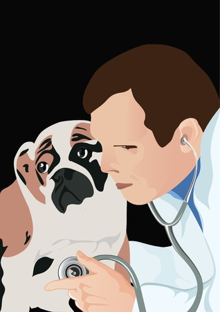 working animals: veterinarian with phonendoscope and dog, veterinarian examining dog and listening with stethoscope during checkup, vector illustration