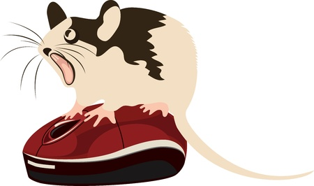 Mouse sitting on top of the computer mouse, vector illustration Vector