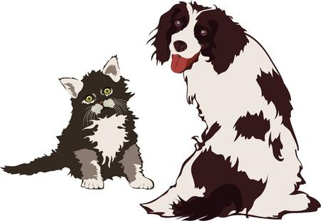 veterinary medicine: Dog and Cat Illustration