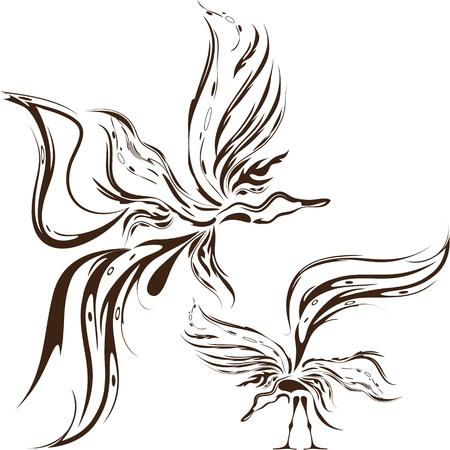 ave del paraiso: ave fantasía Vectores
