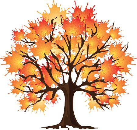 red maples: art autumn tree, Maple Illustration
