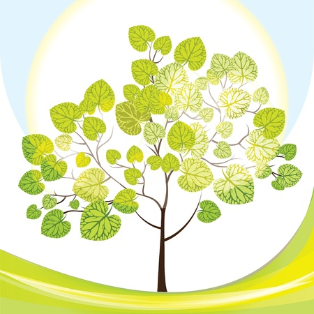 tree with green leaves Stock Vector - 15866813