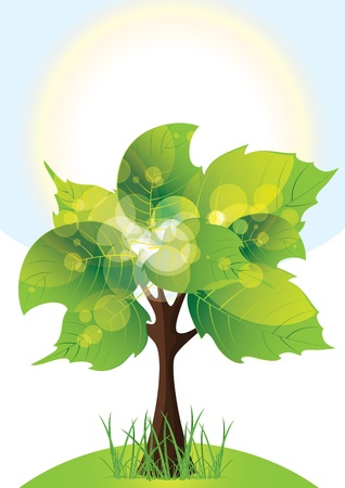 tree with lush green foliage Vector