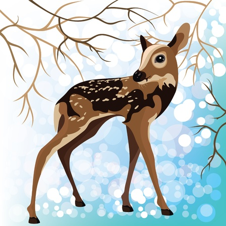 fawn: Young deer in a winter forest Illustration