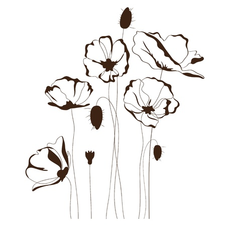 Poppy design, floral background Çizim