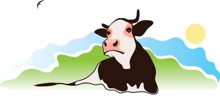 dairy cattle: cow on the pasture, vector illustration