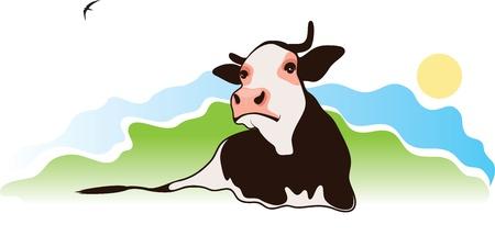 calas blancas: vaca en el pasto, ilustración vectorial Vectores
