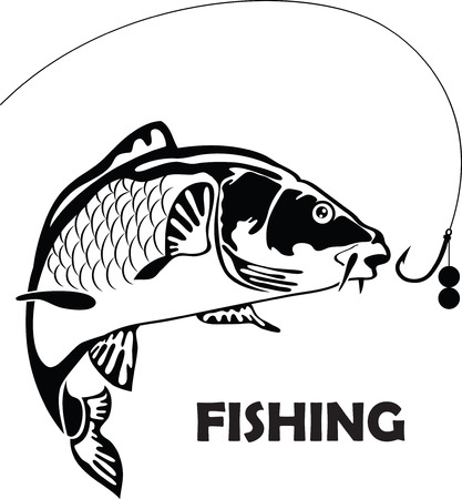 carp fishing: carp fish, vector illustration