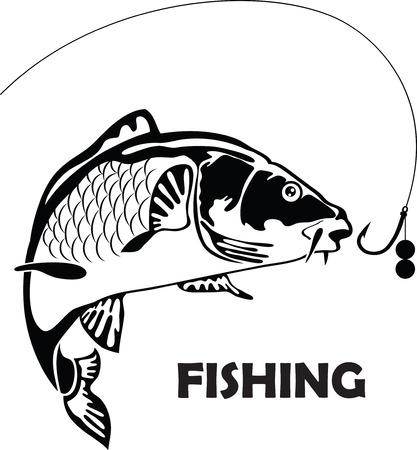 carp fishing: carpa pesce, illustrazione vettoriale