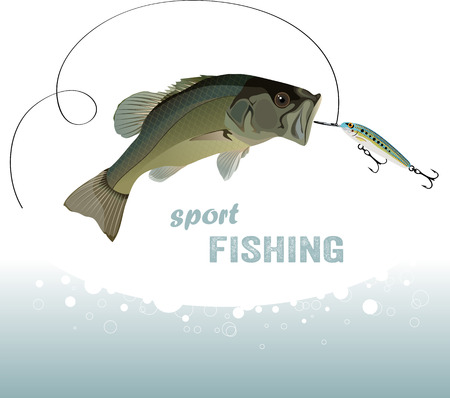 largemouth bass: bass fishing, bass catches the bait, water spray, vector illustration