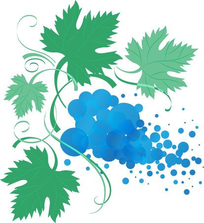 vid: rama de vid estilizada con hojas, ilustración vectorial