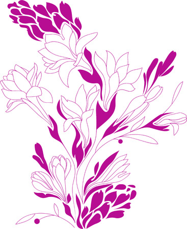 lily buds: Flowers contour drawing, silhouette floral, Tuberose design, vector illustration