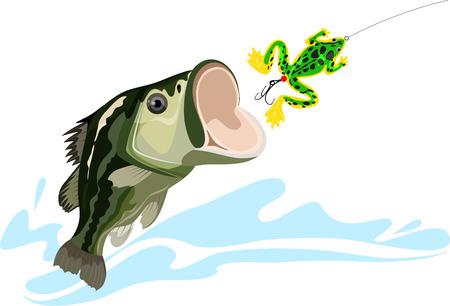 bass and bait, predatory fish, big fishing, silicone bait, vector illustration