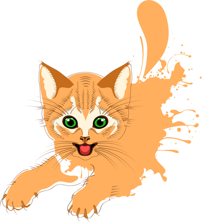 Ginger cat grunge, cheerful kitten