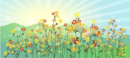 colored: The green meadow with flowers illustration Illustration