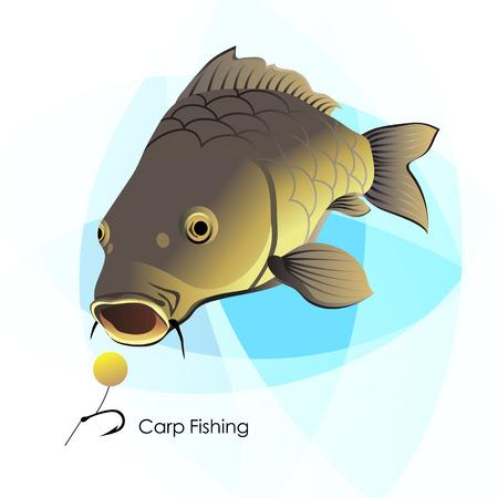 Carp Fishing, vector illustration Stok Fotoğraf - 60066643