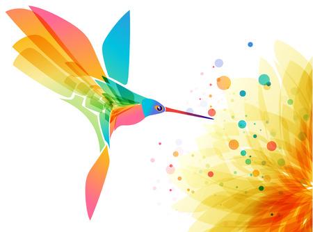 Hummingbird bird and flower on white backdrop, art design