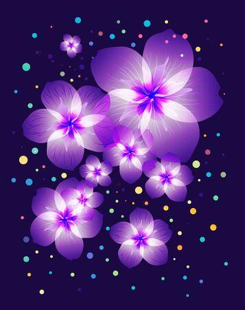 Floral composition, purple flowers on dark background