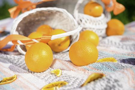 citrus family: still life on picnic from fresh oranges Stock Photo