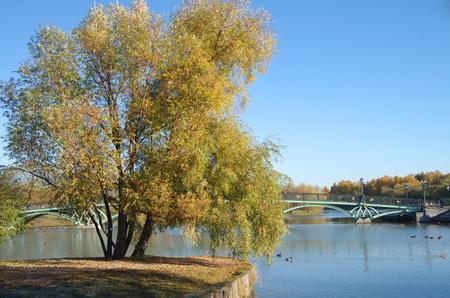 tsaritsyno: Pond in Tsaritsyno in autumn day