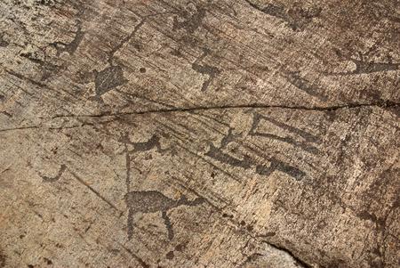 primitivism: BELOMORSK, REPUBLIC OF KARELIA, RUSSIA - August, 2011: Pictures of ancient man - petroglyphs in Zalavruga