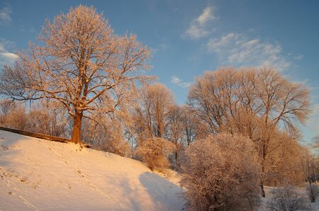 veliky: Winter Park on the banks of the Volkhov River in Veliky Novgorod, Russia