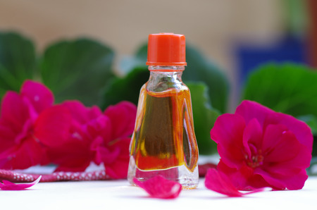 Essential geranium oil on the wooden background Stock Photo