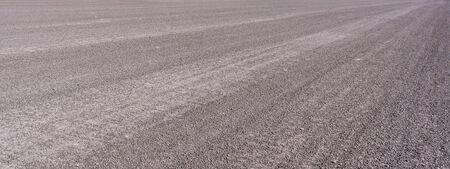 pavement: Asphalt pavement