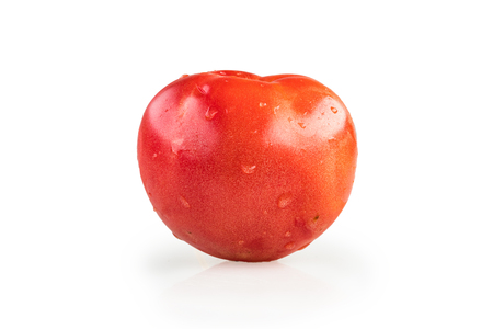 Tomato in white background