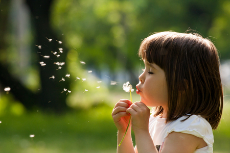 with pollen: Beautiful child with dandelion flower in spring park. Happy kid having fun outdoors.