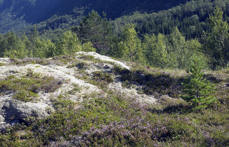 landforms: Mountain and landforms Stock Photo