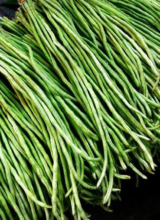 long: Long bean Stock Photo