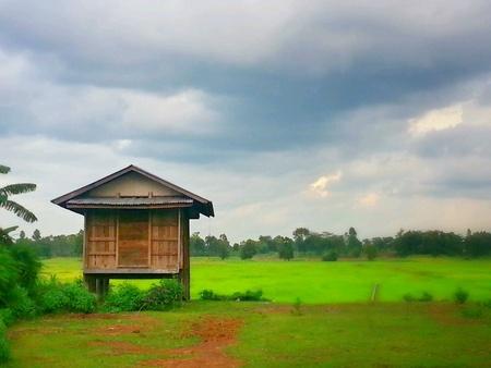 granary: Rice granary