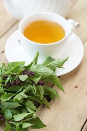 basil tea with basil Reklamní fotografie