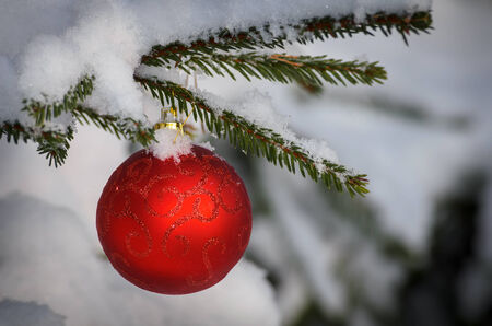 bedeck: christmas decorative ball on green branch under snow Stock Photo