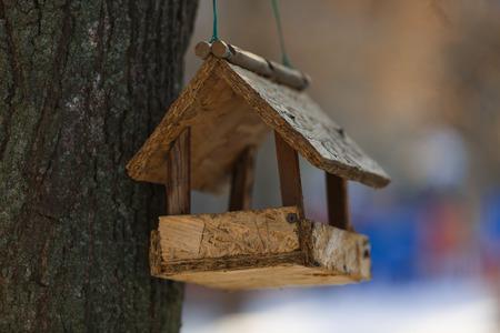 feeding trough for birds on a tree wooden feeder