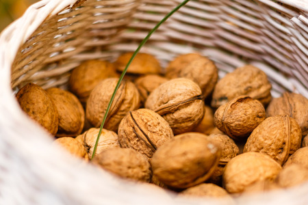 walnuts in the basket Stock Photo