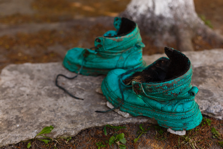 Old shoe covered in moss in a spring forest. Abstract image. Stock Photo