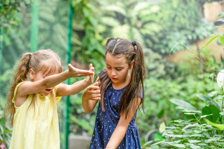 two little girls with butterflies in a greenhouse Standard-Bild