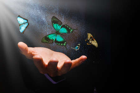 butterflies over hands on a black background and rays