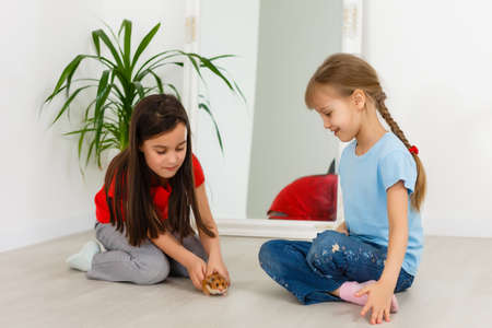 two little girls play with a hamster