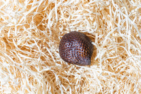 Salak snake fruit on hay background and full depth of field