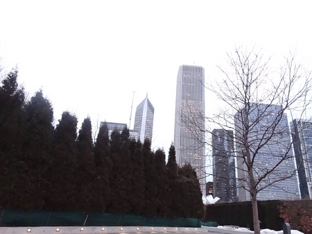 architecture: Chicago city, millennium park
