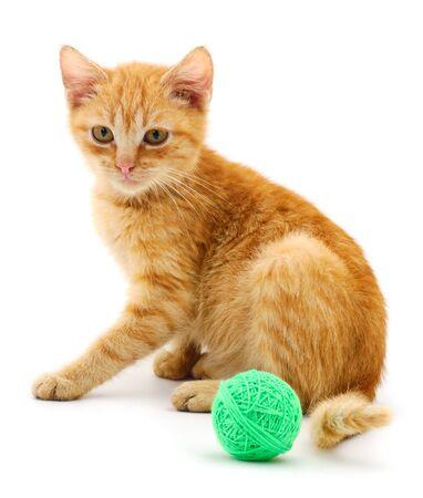 Rote Katze mit einem Ball. Auf weißem Hintergrund.