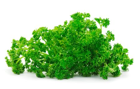 Fresh green organic parsley on white background  Stock Photo