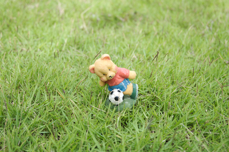 article of clothing: close up of bear playing football