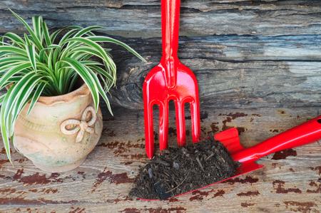 pot of plant, shovel, fork and soil. planting concept. Reklamní fotografie