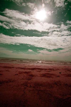 Sky Sea and Sun Flare Landscape, Vertical