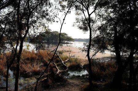 gurgaon: Sultanpur Nature Park